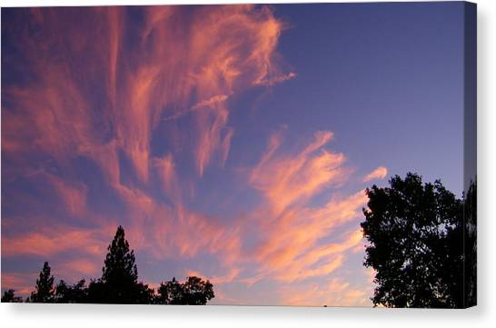 Pink Burst Canvas Print