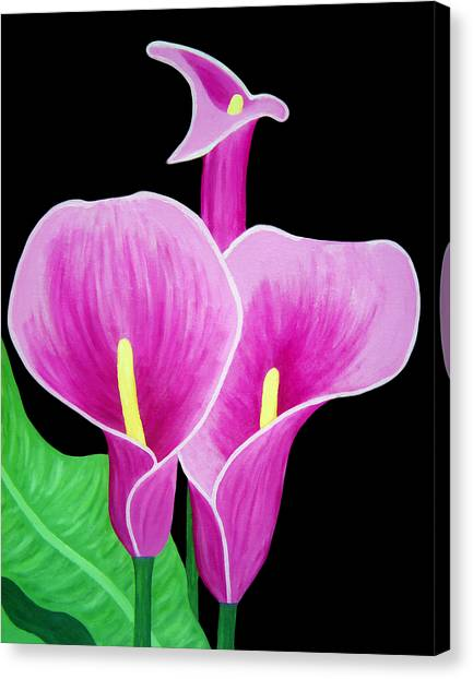 Pink Calla Lillies 2 Canvas Print
