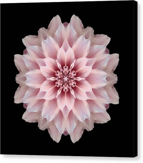 Pink Dahlia Flower Mandala Canvas Print