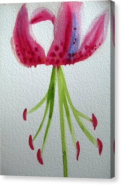 Pink Day Lily Canvas Print by Sacha Grossel