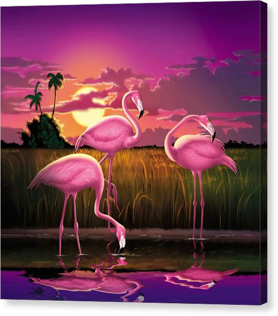 Tropical Sunset Canvas Print - Pink Flamingos At Sunset Tropical Landscape - Square Format by Walt Curlee