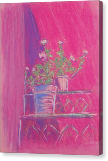 Pink Geraniums Canvas Print by Marcia Meade