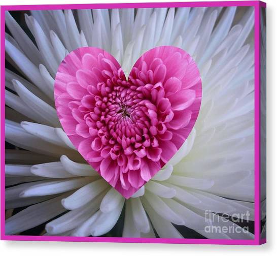 Pink Heart On White Canvas Print