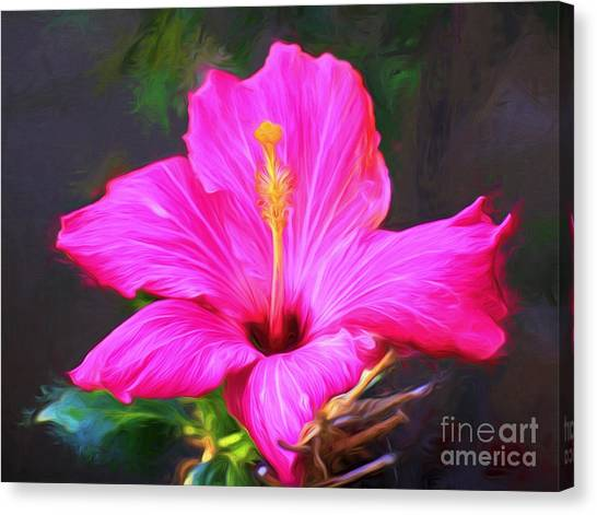 Pink Hibiscus Digital Painting In Oil Canvas Print