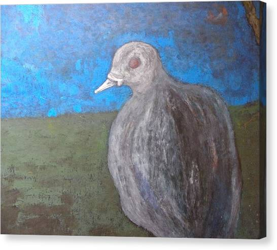 Pink Pigeon In Blue Canvas Print by Artist Geoff Francis