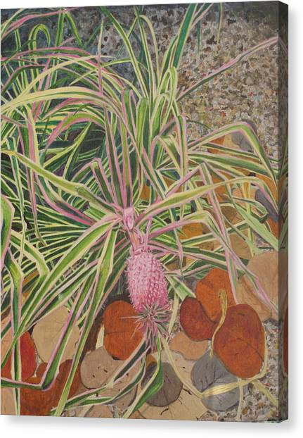 Pink Pineapple Canvas Print