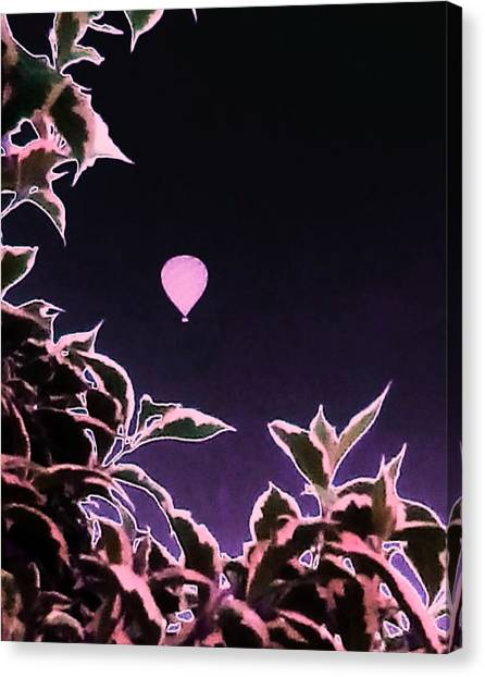 Hot Air Balloons Canvas Print - Pink Plant Balloon by Candy Floss Happy