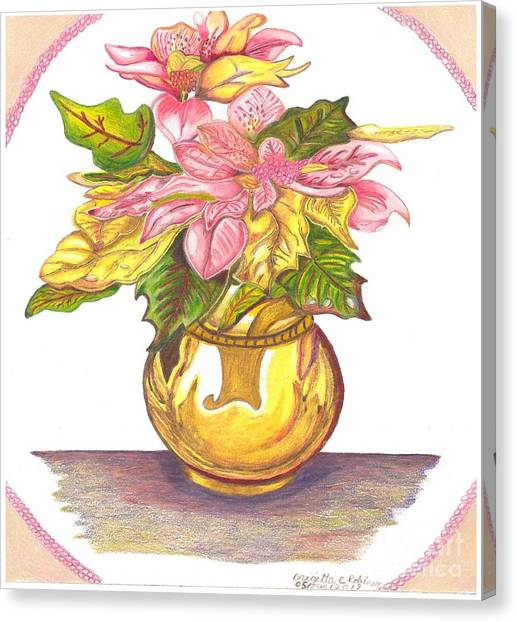 Pink Poinsettia Plant Canvas Print