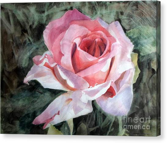 Pink Rose Greg Canvas Print