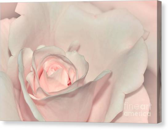 Pink Satin Canvas Print