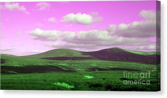 Pink Sky Canvas Print by Jo Collins