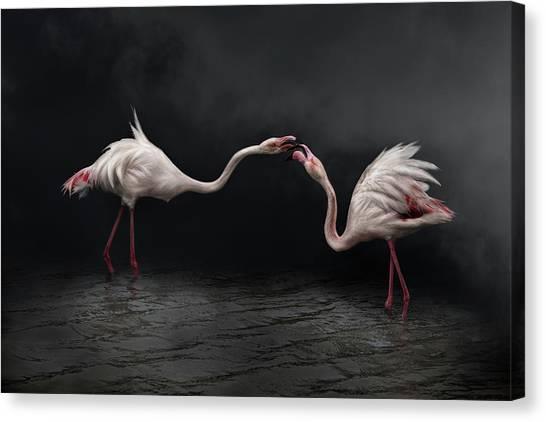 Pink Strategy Canvas Print by Martine Benezech