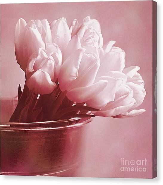 Pink Whisper Canvas Print