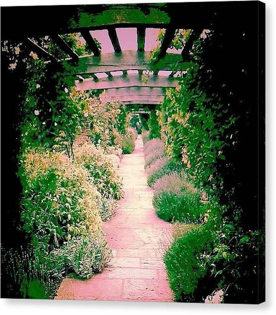 Floss Canvas Print - pink/green Path Edit #pink by Candy Floss Happy