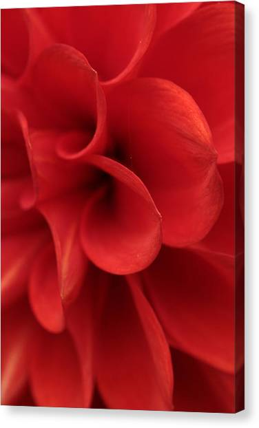 Scarlet Pipes Canvas Print