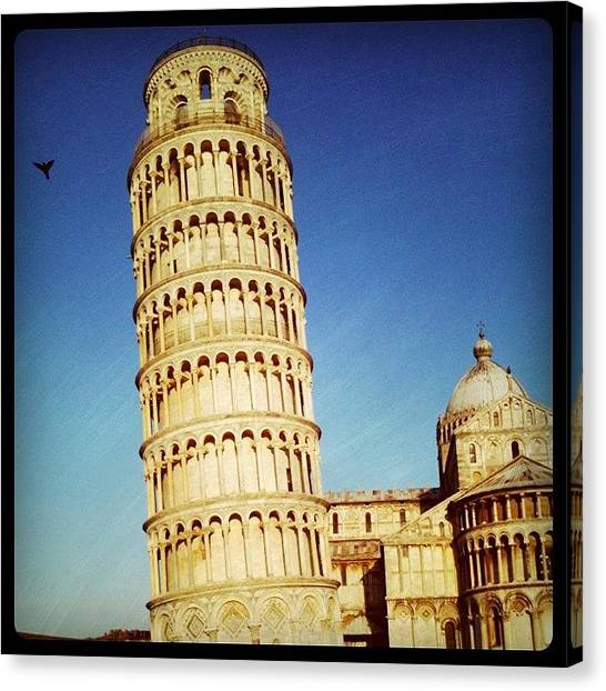 Falcons Canvas Print - Pisa by Carles Falcon