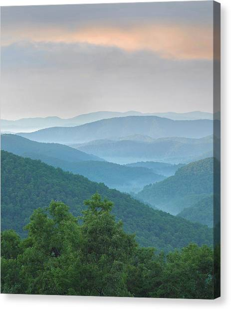Pisgah National Forest Canvas Print - Pisgah National Forest From Blue Ridge by Tim Fitzharris