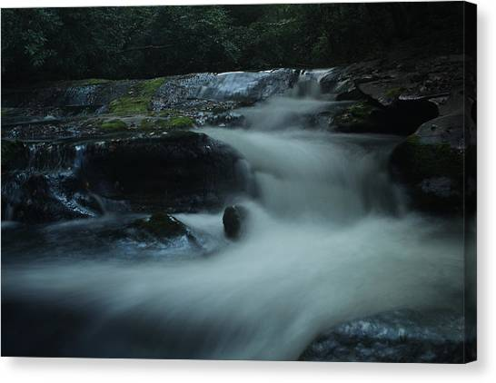 Pisgah National Forest Canvas Print - Pisgah National Forest by Jessica Brawley