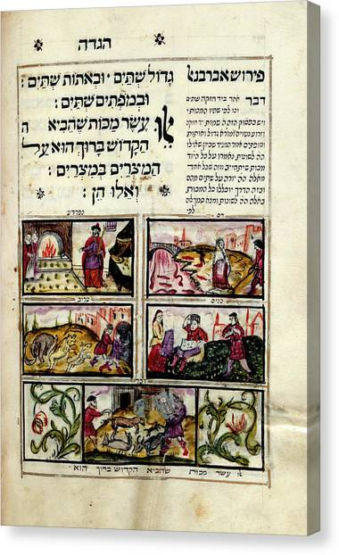 Torah Canvas Print - Plagues Of Egypt by British Library