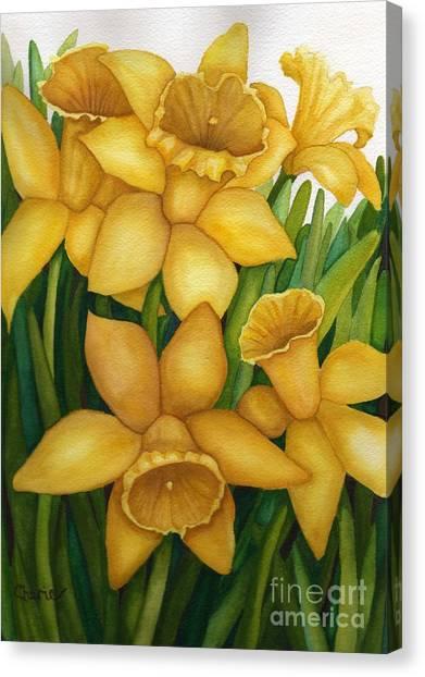 Playful Daffodils Canvas Print by Vikki Wicks