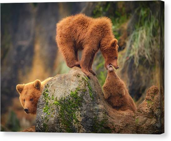 Playing In The Heights Canvas Print by Sergio Saavedra Ruiz