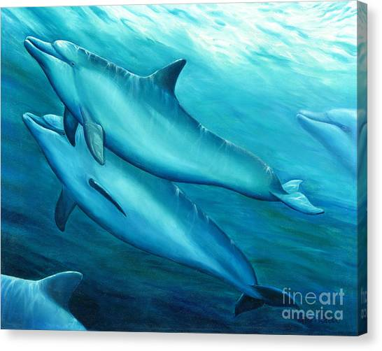 Bottlenose Dolphins Canvas Print - Playtime by Catherine Garneau