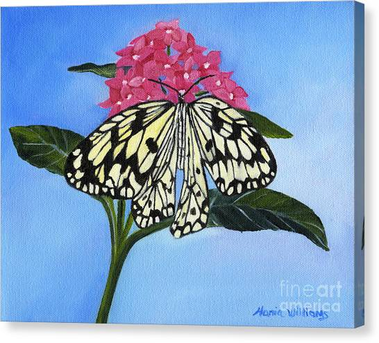 Pleasant Sighting Canvas Print by Maria Williams