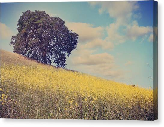 Field Canvas Print - Please Send Some Hope by Laurie Search