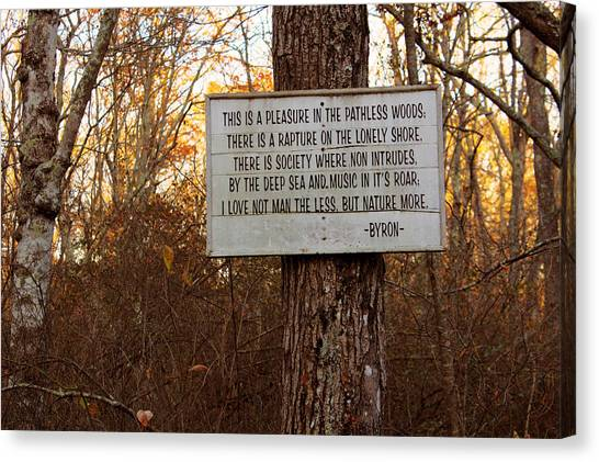 Pleasure In The Pathless Woods Canvas Print