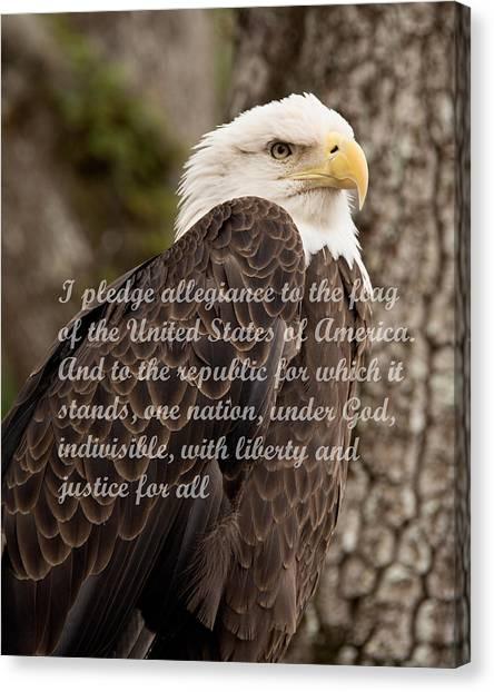 Pledge Of Allegiance Canvas Print