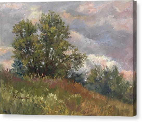 Cloudy Canvas Print - Plein Air - Near The Chicopee River by Lucie Bilodeau