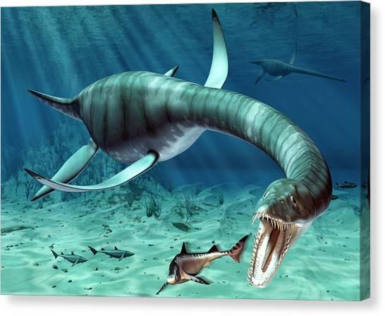 Flipper Canvas Print - Plesiosaur Attack by Roger Harris
