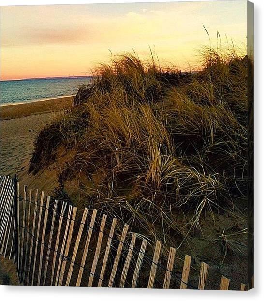 Seagrass Canvas Print - Plum Island Beach 1/1/2015 Was Pretty by Kerri Ann Crau