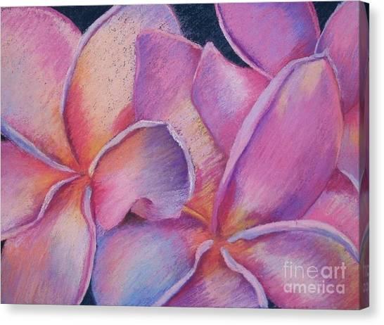 Plumeria 2 Canvas Print