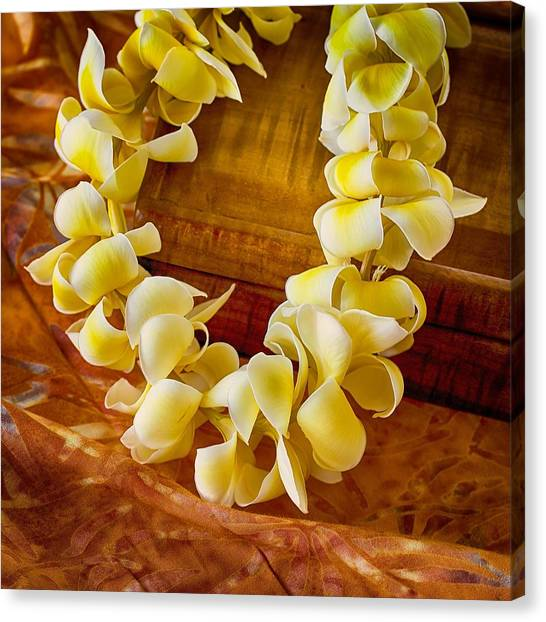 Plumeria Lei On Koa Box Canvas Print