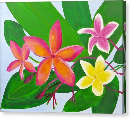 Plumerias Canvas Print