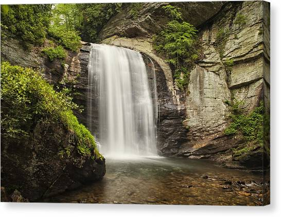 Pisgah National Forest Canvas Print - Plunging Waterfall by Andrew Soundarajan