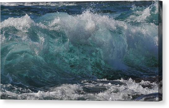Poetry In Motion Canvas Print
