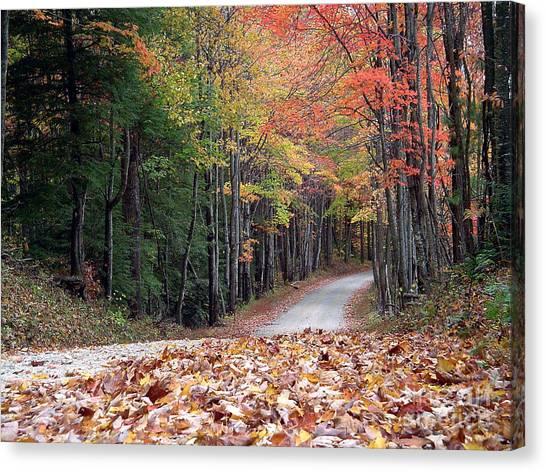 Poga Autumn Canvas Print