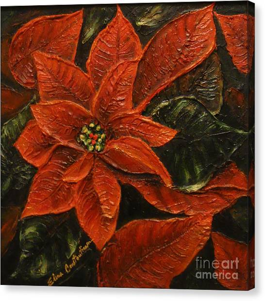 Poinsettia 2 Canvas Print