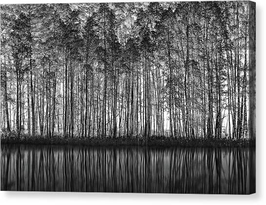Tree Trunks Canvas Print - Pointillism Nature by Roswitha Schleicher-schwarz