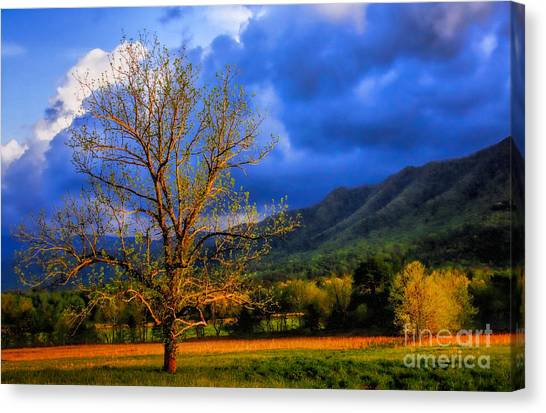 Pointing To Majestry  Canvas Print