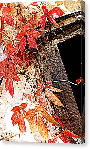 Poison Canvas Print by Beverly Hammond