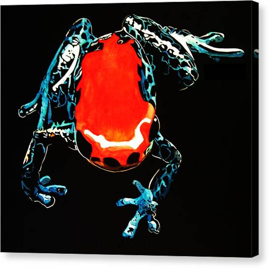 Poison Dart Frog Canvas Print by Mike Durco