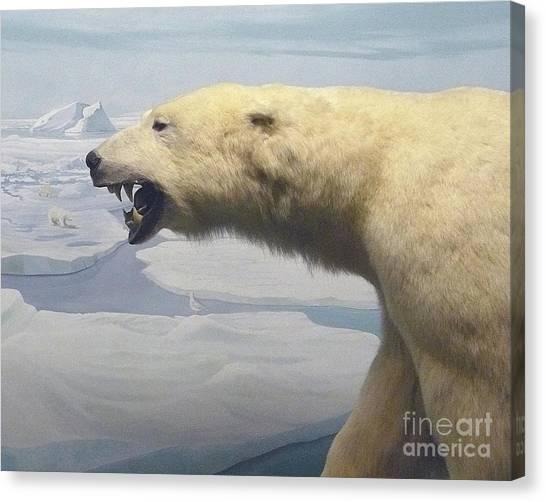 Polar Bear Diorama Canvas Print