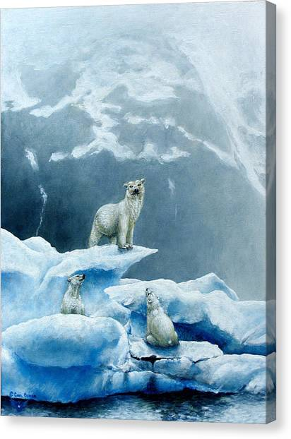 Polar Knowledge Canvas Print by Cara Bevan