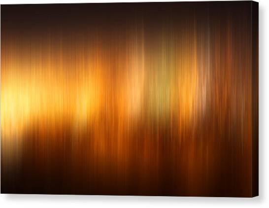 Polar Lights Canvas Print