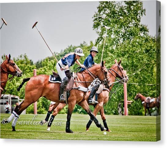 Polo Play I Canvas Print by Sherri Cavalier