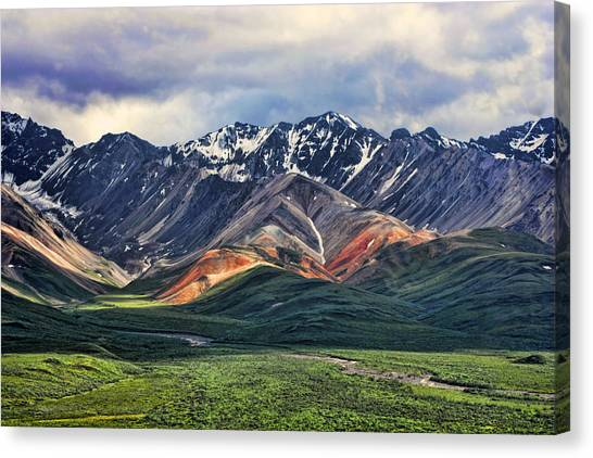 Mountains Canvas Print - Polychrome by Heather Applegate