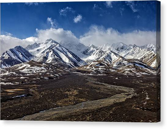 Denali Canvas Print - Polychrome Pass by Rick Berk